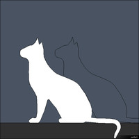 2D Cat 00296se