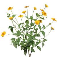 Flower_V_16