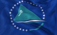Pacific Community Flag