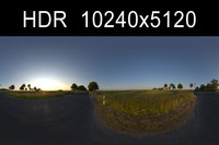 Road in Field 2