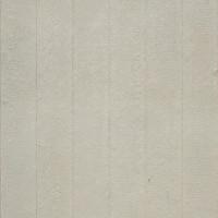 House Siding (Hardy Panel)