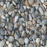 Rock Bed 1