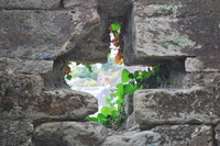 Castle_Window_0001