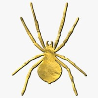 TXF Spider02 Gold
