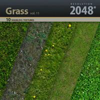 Grass Textures vol.11