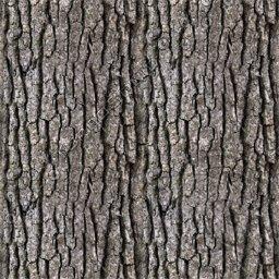 Tiled tree bark