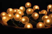 Festive Lights_0004