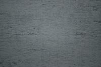 Plaster_Texture_0008