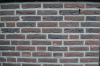 Wall_Texture_0006
