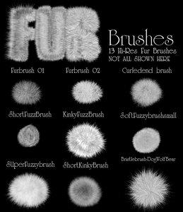 Fur Brushes