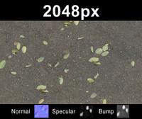 2x Leaves on Sand 2 - Set