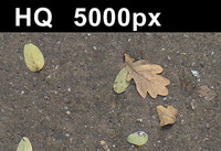 2x Leaves on Sand 2 - Hi Res