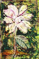 Flower Az 00021
