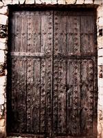 Medieval door 1