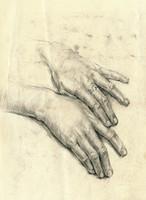hands (palms)
