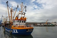 Breskens fishing harbour 2
