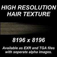 High Resolution Hair Texture - Dark Blond
