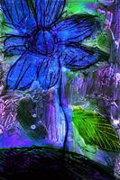 flower Az 00015