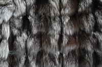 silver fox fur texture