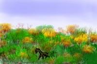 fantasy landscape16