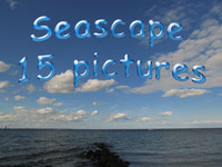 Seascape collection 15 item