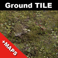Mossy ground tileable