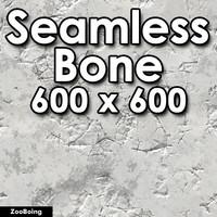 Biology 021 - Bone