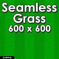 Grass 013 - Seamless Texture