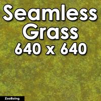 Grass 023 - Seamless Texture