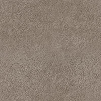 carpet_beige