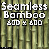 Plant 013 - Bamboo