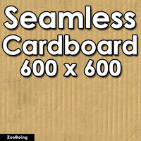 Paper 003 - Cardboard