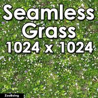 Grass 022 - Seamless Texture