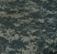 US Army Digital camo