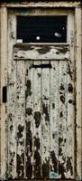 Old Wooden Door 02