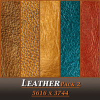 Leather Pack 2