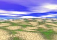 grassy beach