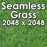 Grass 003 - Seamless Texture