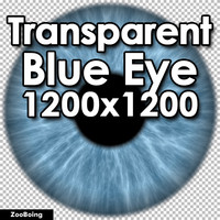 Biology 032 - Blue Eye