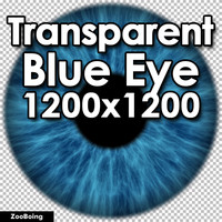 Biology 039 - Blue Eye