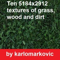 grass wood and dirt