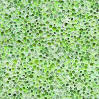 Pumice green