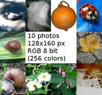 natur in 10 stock photo