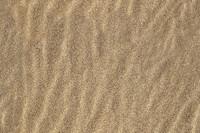 Sand Ripple 2