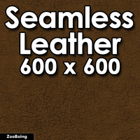 Skin 033 - Leather