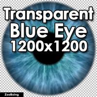Biology 033 - Blue Eye