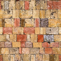 Medieval Brick Path