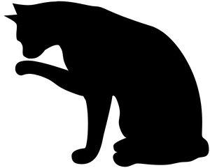 Cat licking hand preloader