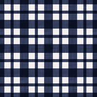 Coordinated Cottons - White on Navy Plaid