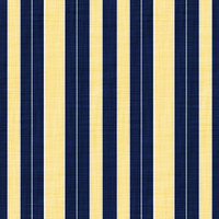 Coordinated Cottons - Yellow on Navy Stripes